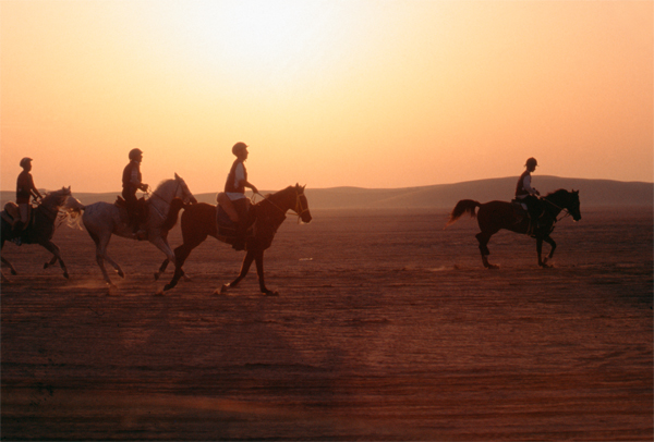 Endurance Qatar 2002-600px