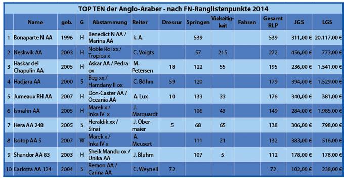 TOP TEN Anglo-Araber