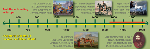 Timeline - Arab Horse Breeding in Europe vs. the Arab and Islamic countries